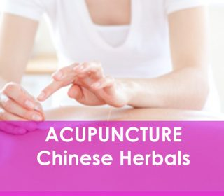 Acupuncture Ottawa, Pain, Fatigue, Digestion, Hormone Imbalance, Fertility, Revivelife