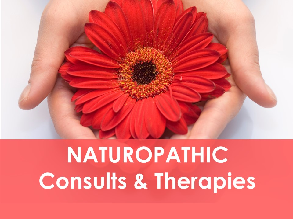 Naturopathic Medicine Ottawa, Naturopath, Dr Joel, Nutrition, Stress, Digestion