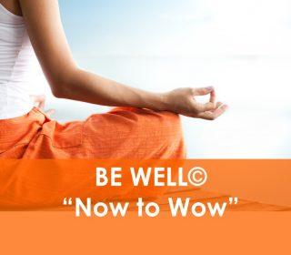 Be Well Ottawa, Naturopath, Dr. Joel, Stress & Lifestyle Management, Fatigue, Digestion, Stress